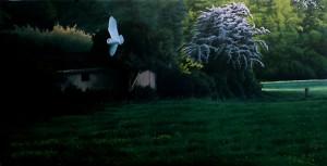 Lukisan-lukisan burung karya Mike Hughes