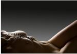 100 Pemenang lomba foto berobyek pria atau wanita cantik telanjang (94)